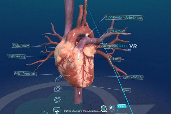 Virtual reality now available in UniZiegler